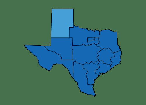 state of texas logo