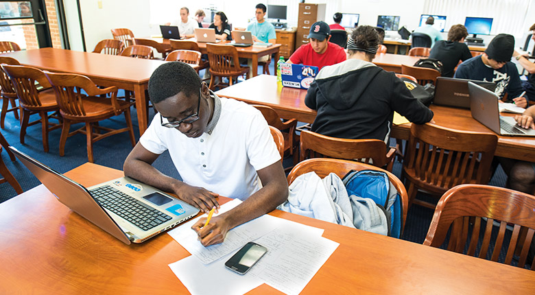 Student studying in the Honors College