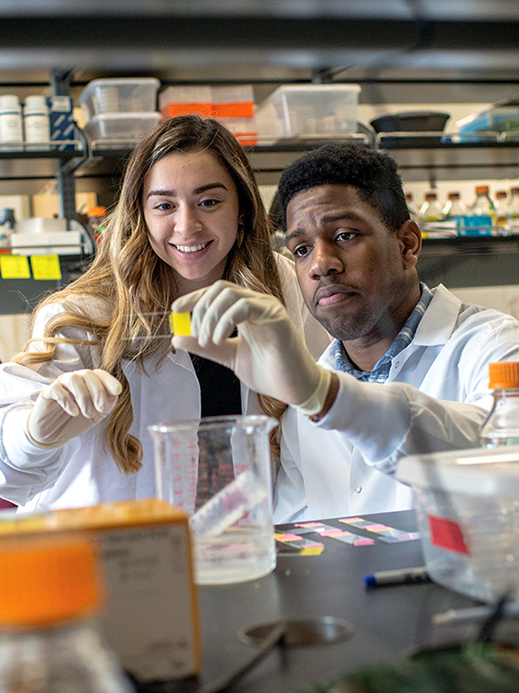 Undergraduate researchers looking at slide