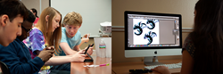 A side by side image of people using their phone and a person working on a computer