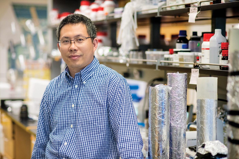 """Yi Hong, Ph.D., Bioengineering"""" width=""""1408"""" _languageinserted=""""true"""" src=""""https://cdn.web.uta.edu/-/media/project/website/engineering/bioengineering/highlights/hong-award.ashx?la=en"""