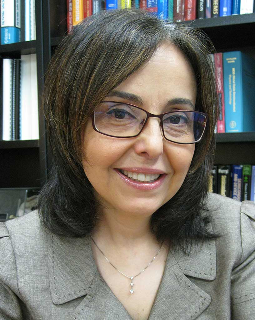 Zeynep Çelik-Butler, Ph.D., Electrical Engineering