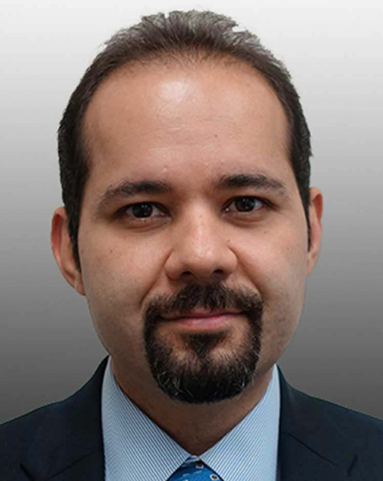 Mohsen Shahandashti, Ph.D., Civil Engineering