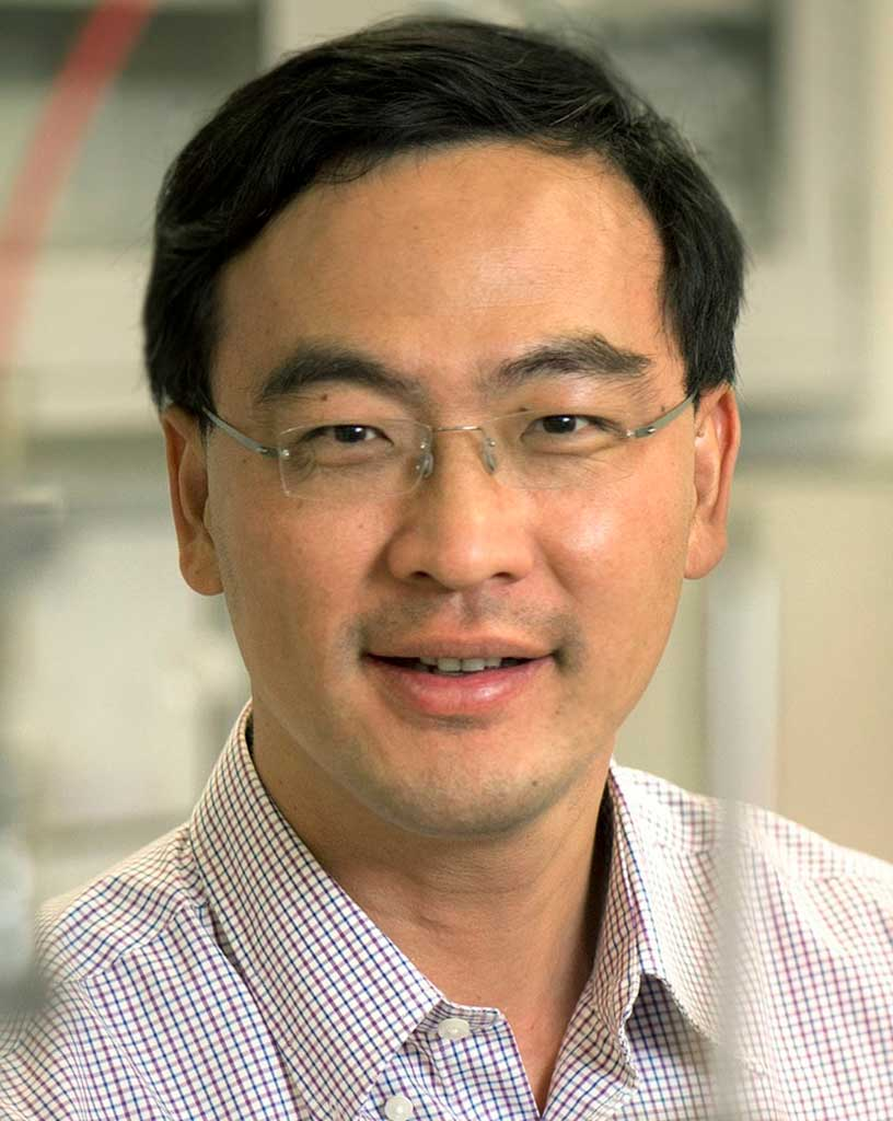 Weidong Zhou, Ph.D., Electrical Engineering