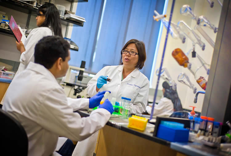 Biomedical engineers in a laboratory
