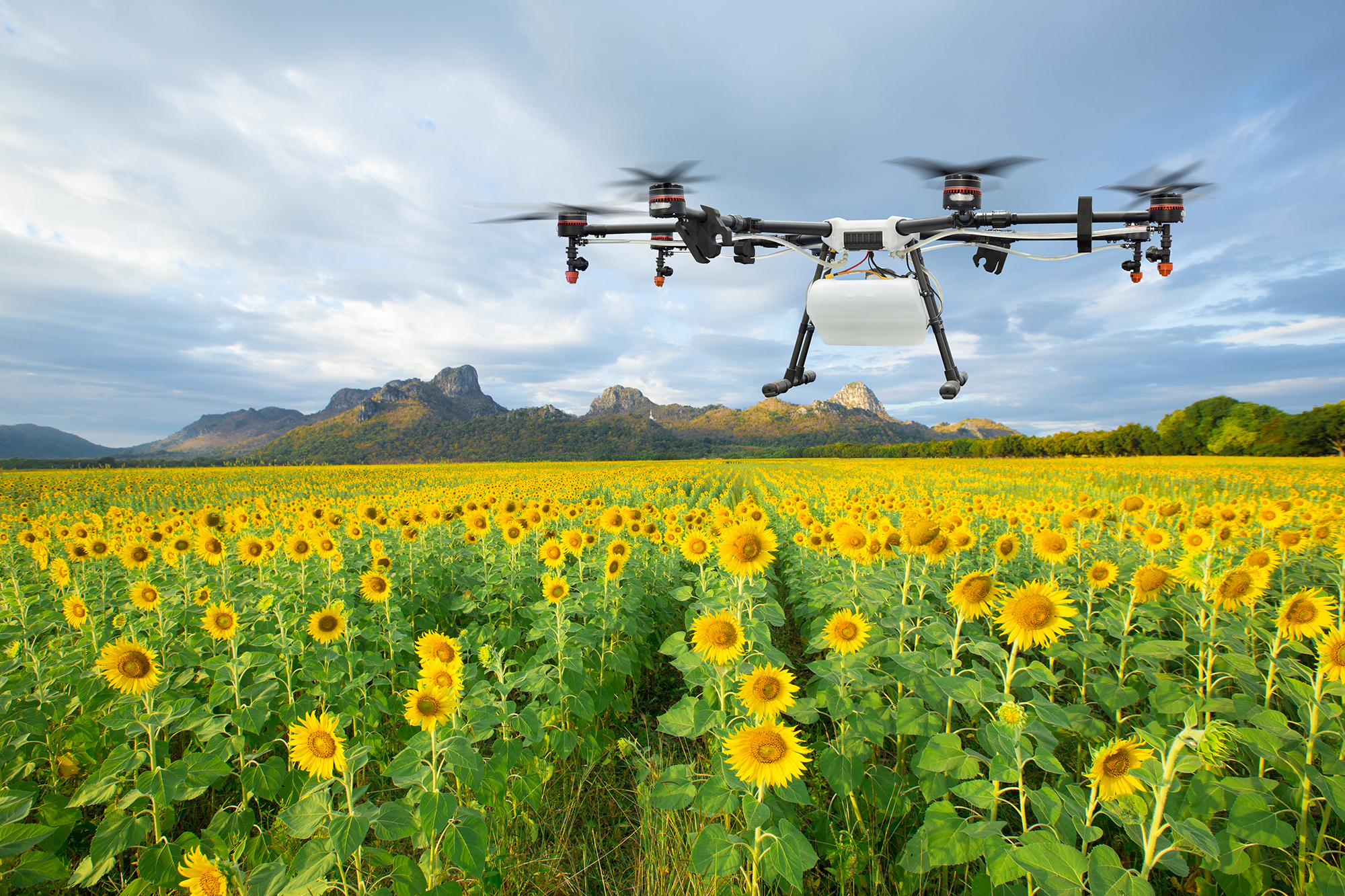 unmanned aerial vehicles in agriculture