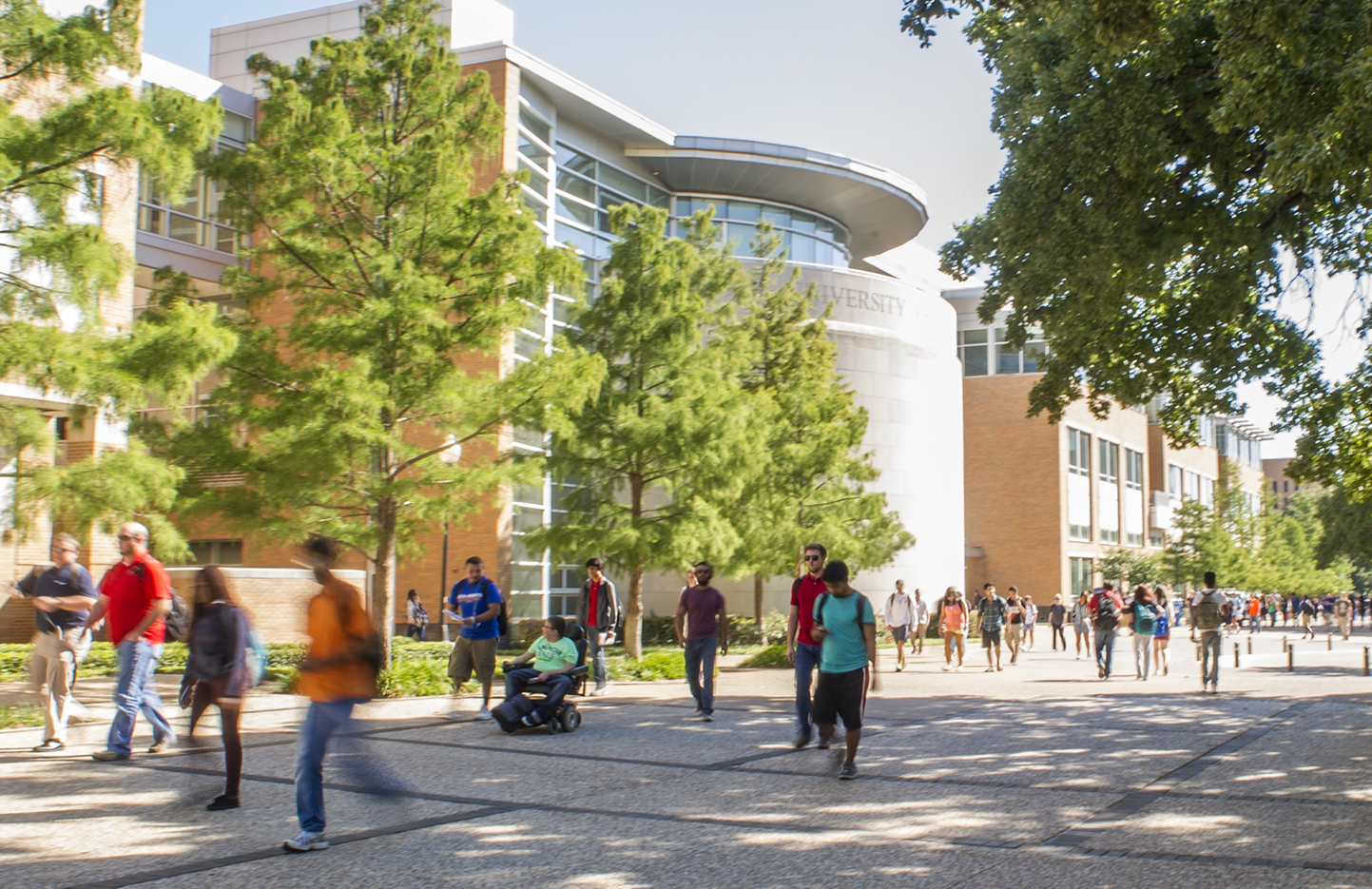 Spring 2017 enrollment