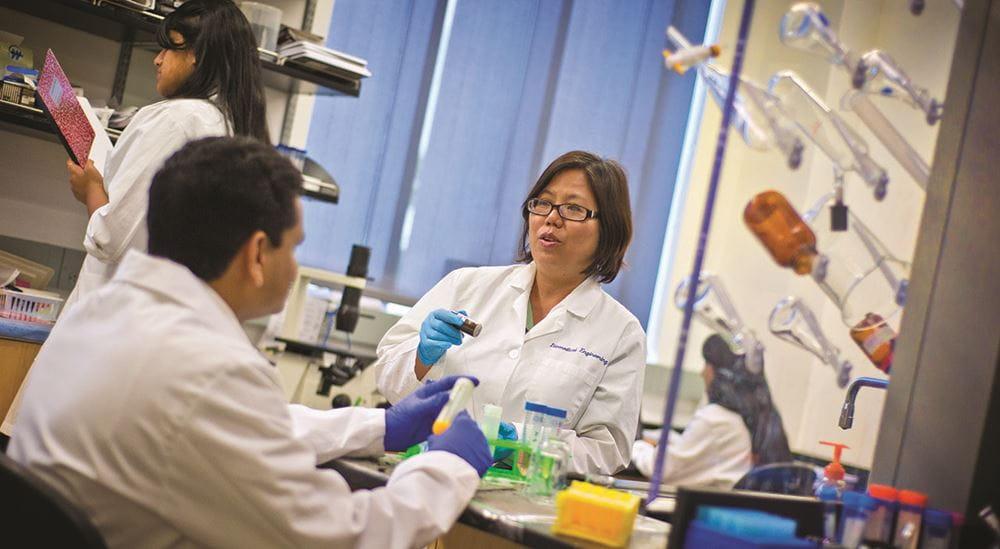 Dr Kytai Nguyen in Biomedical Engineering