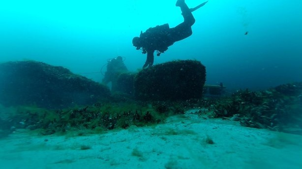 """scuba diver at hunting structure"""" _languageinserted=""""true"""