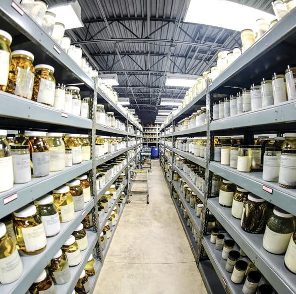 ARDRC Shelves