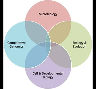 biology research groups