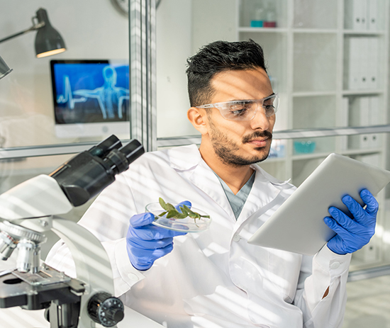 A scientist in a lab coat and safety gloves reviews a biological sample in a laboratory.