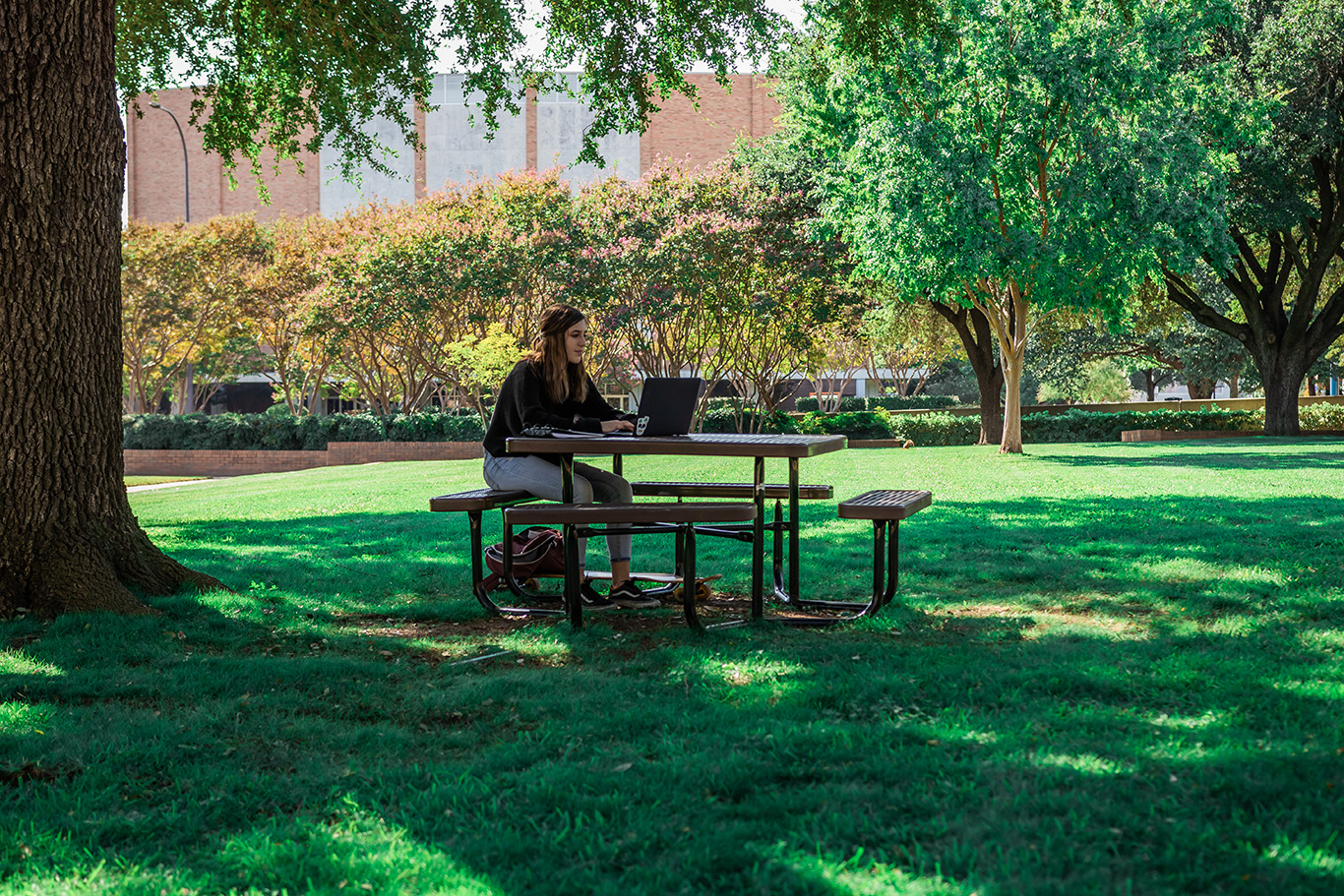 A person sitting on a bench with a computer